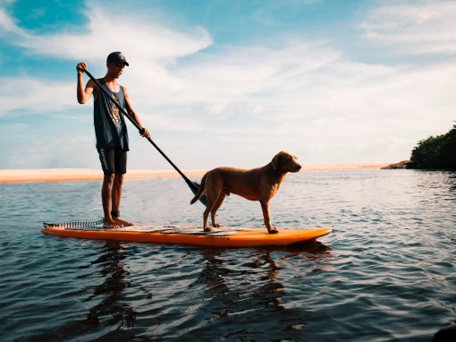 Eight Reasons Why Stand Up PaddleBoarding Is Good For Health
